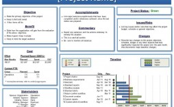 001 Unusual Project Management Report Template Ppt Concept  Weekly Statu