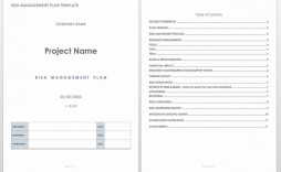 001 Wondrou Project Management Plan Template Doc High Definition  Example