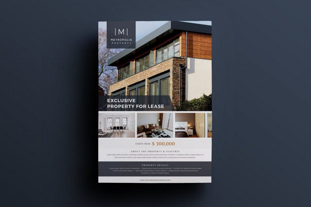 002 Amazing Real Estate Flyer Template Sample  Publisher Word FreeLarge
