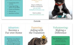 002 Best Pet Adoption Flyer Template Sample  Free Event Dog