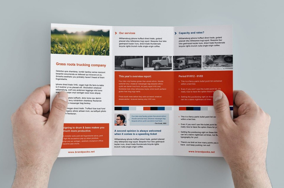 002 Breathtaking Free Tri Fold Brochure Template Concept  Microsoft Word 2010 Download Ai Downloadable For960