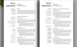 002 Excellent Resume Template Free Word High Resolution  Download 2020 Cv