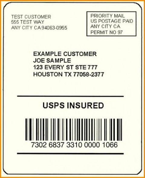 002 Exceptional Free Usp Shipping Label Template Sample 480