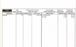 002 Fascinating Free Paycheck Stub Template Example  Check Download Pay
