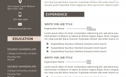 002 Frightening Professional Cv Template 2019 Free Download Inspiration
