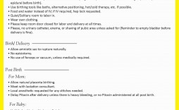 002 Imposing Natural Birth Plan Template Highest Clarity  Childbirth Example
