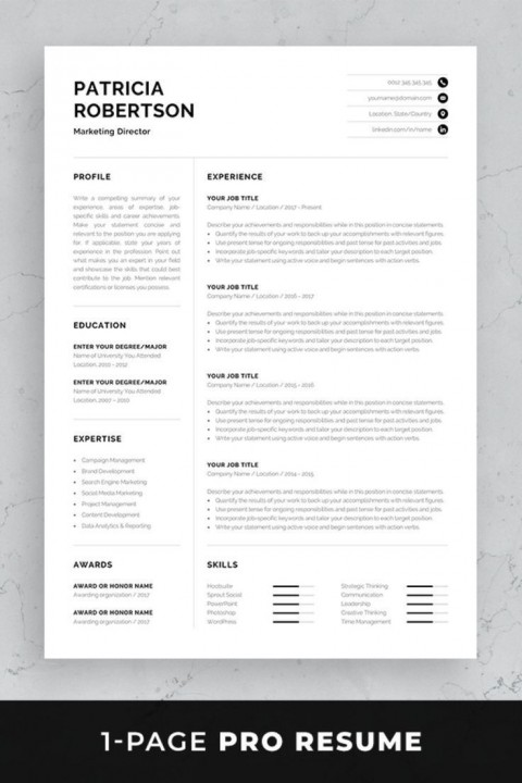 002 Impressive One Page Resume Template Photo  Word Free For Fresher Ppt Download Html480