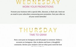 002 Incredible Social Media Plan Sample Highest Clarity  Marketing Template Pdf Strategy Content