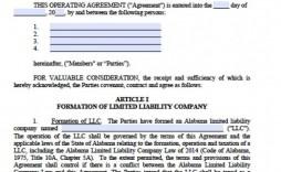 002 Marvelou Llc Partnership Agreement Template High Def  Operating Free