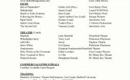002 Marvelou Technical Theatre Resume Template Design  Google Doc