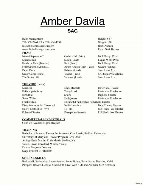 002 Marvelou Technical Theatre Resume Template Design  Google Doc Tech480