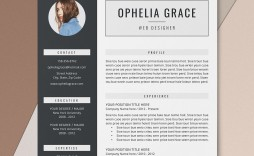 002 Outstanding Simple Professional Cv Template Word High Definition