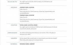 002 Rare Resume Format Example Free Download High Def