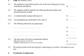 002 Shocking Free Basic Employment Contract Template South Africa Concept  Temporary