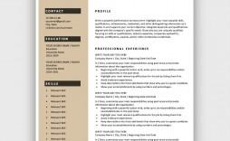 002 Shocking Free Resume Template Microsoft Word Idea  2007 Eye Catching Download 2010