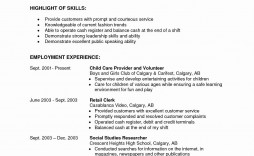 002 Shocking Part Time Job Resume Template Concept  Student Summary Example