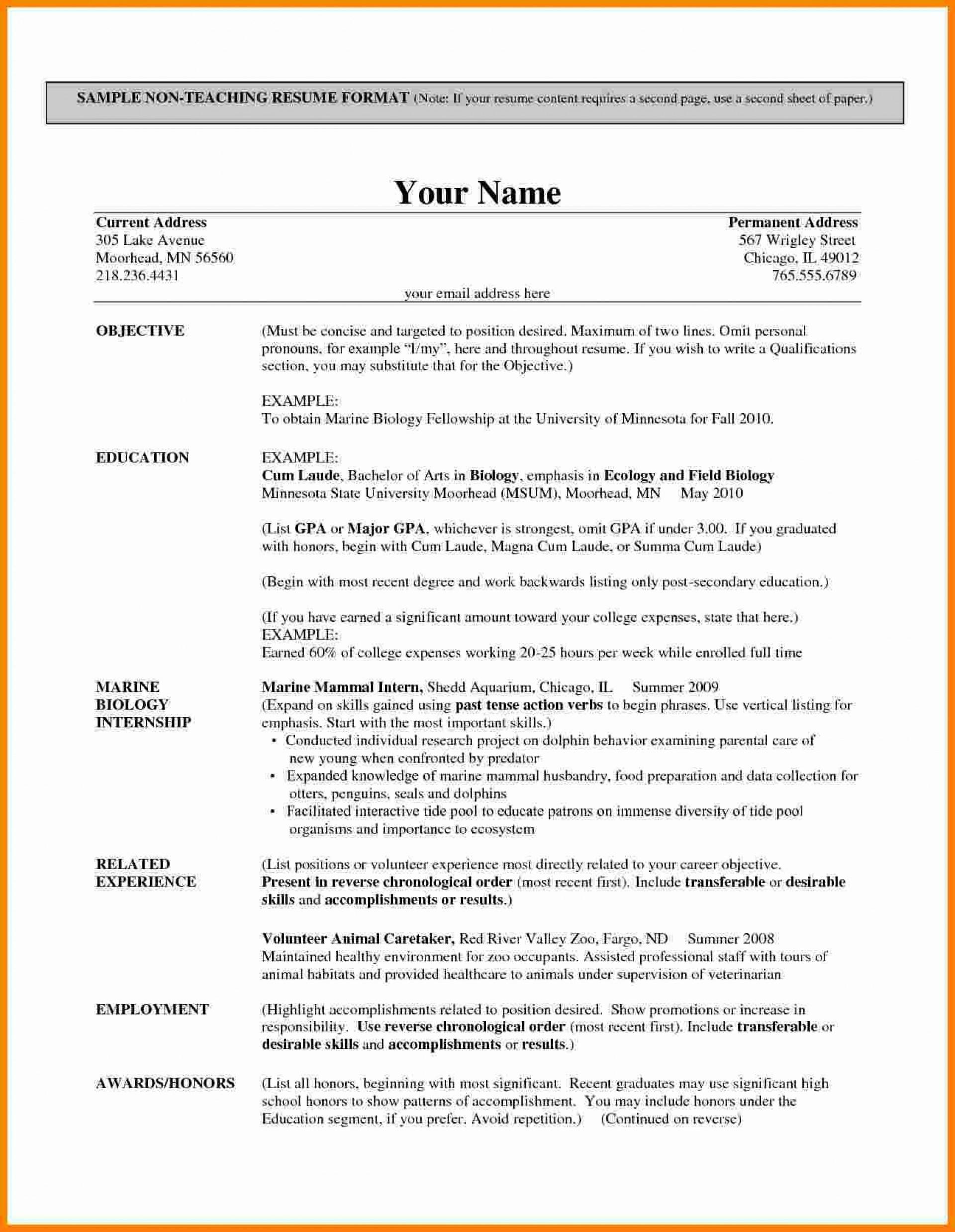 002 Shocking Resume Example For Teacher Job Picture  Sample Cv School1920