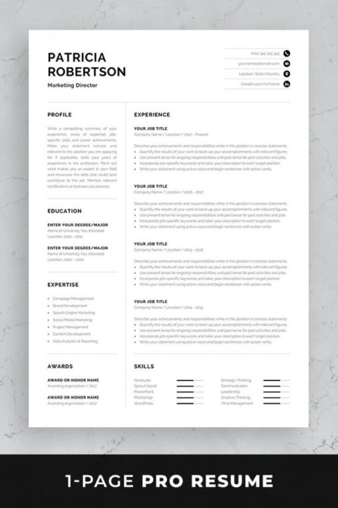 002 Simple 1 Page Resume Template Concept  One Microsoft Word Free For Fresher480