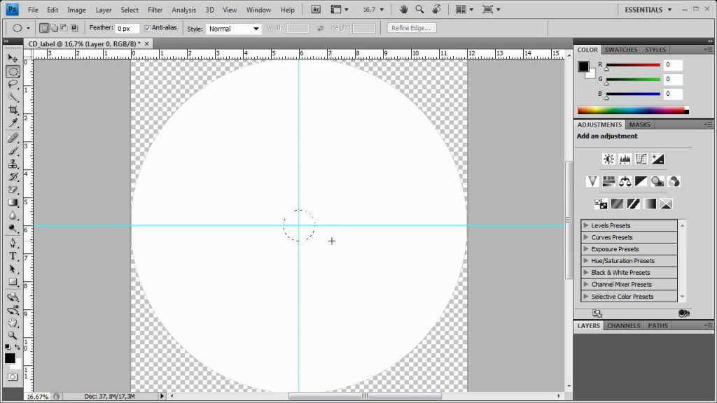 002 Simple Cd Label Design Template Free Download Example  Cover PsdLarge