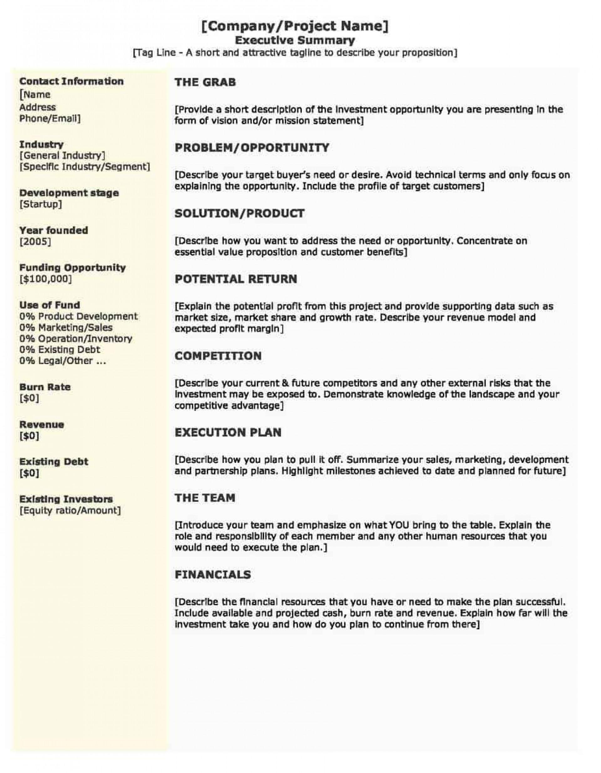 002 Simple Executive Summary Template Doc Photo  Document Example Google1920