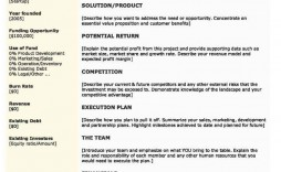 002 Simple Executive Summary Template Doc Photo  Document Example Google
