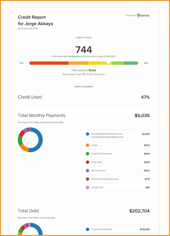 002 Singular Fake Credit Report Template Example  Karma Equifax1920