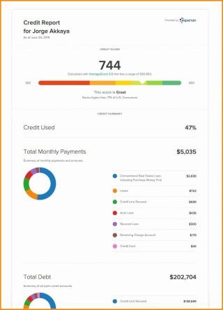 002 Singular Fake Credit Report Template Example  Karma Equifax320