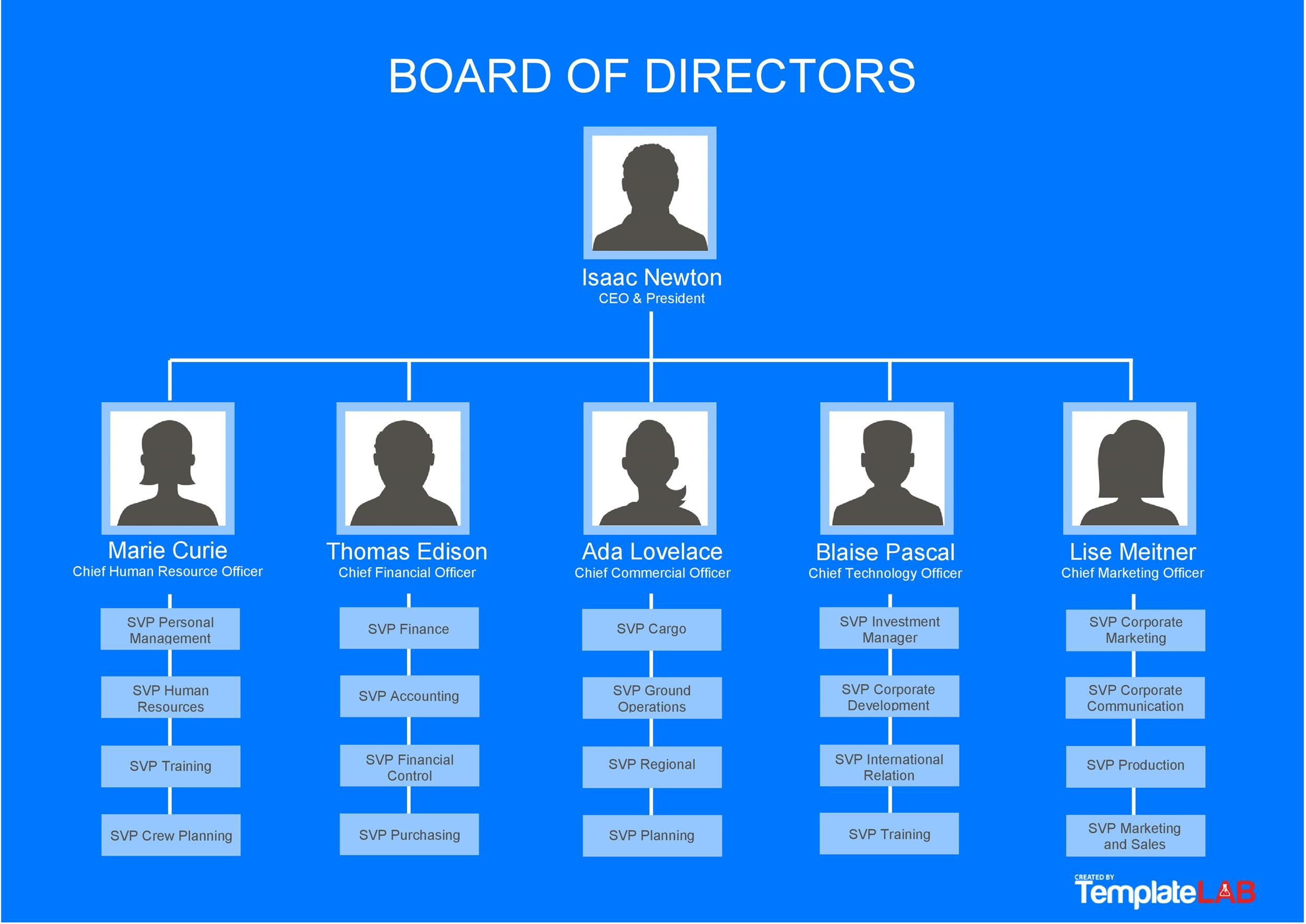 002 Singular Hierarchy Organizational Chart Template Word Picture  Hierarchical Organization -Full