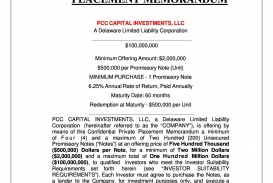 002 Staggering Private Placement Memorandum Outline High Def  Template Offering Sample Film
