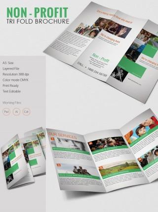 002 Stirring Indesign Trifold Brochure Template Photo  Tri Fold A4 Bi Free Download320
