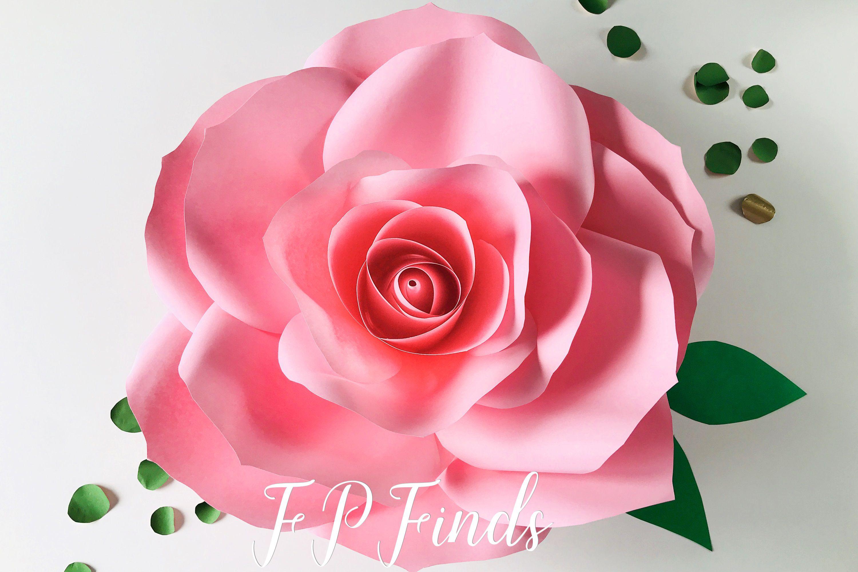 002 Stirring Paper Rose Template Pdf High Definition  Flower Giant Free CrepeFull