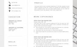 002 Striking Best Professional Resume Template Highest Quality  Reddit 2020 Download
