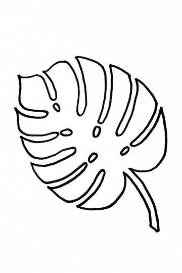 002 Striking Leaf Template With Line Idea  Fall Printable Blank360