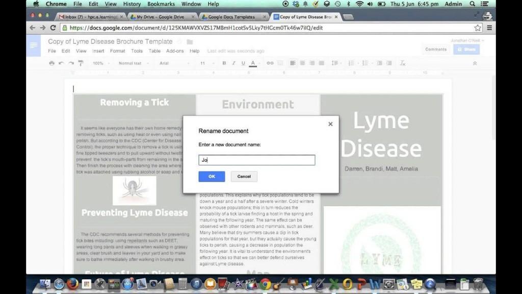 002 Surprising Brochure Template Google Doc Inspiration  Blank Tri Fold SlideLarge