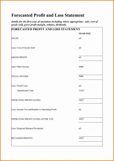 002 Surprising Simple Profit And Los Statement Template Free High Definition  For Self Employed Form480
