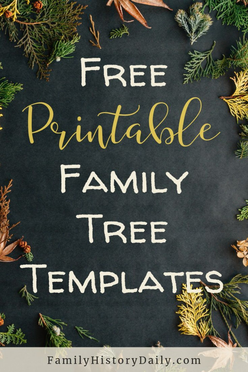 002 Top Family Tree Book Template Photo  FreeLarge