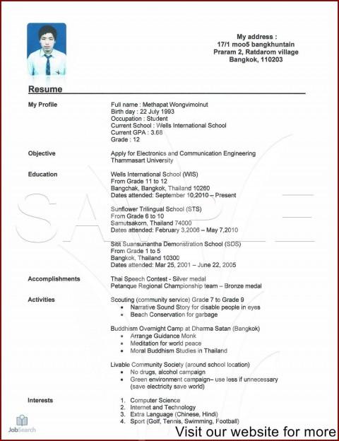 002 Unique Professional Cv Template Free Online Idea  Resume480
