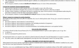 003 Amazing Medical Treatment Authorization And Consent Form Template Idea