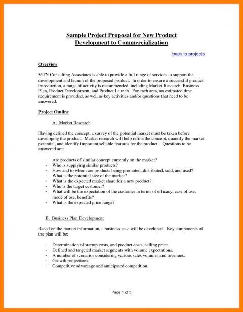 003 Amazing Web Development Proposal Template Pdf Sample 480