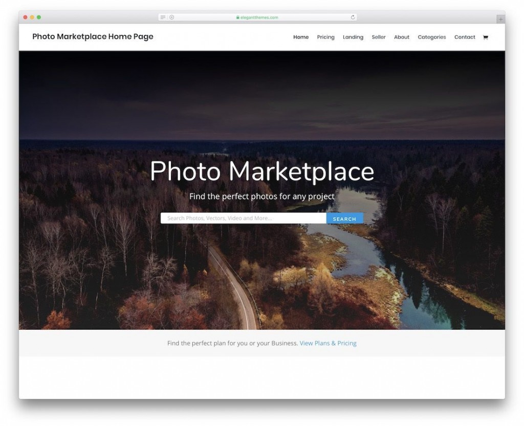 003 Amazing Web Template For Photographer Concept  PhotographyLarge