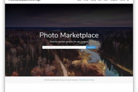 003 Amazing Web Template For Photographer Concept  Photography