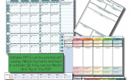 003 Astounding Editable Lesson Plan Template Middle School High Def