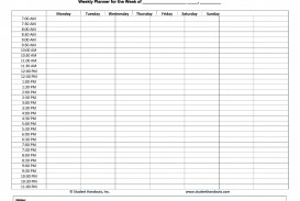 003 Astounding Free Hourly Schedule Template Word Sample
