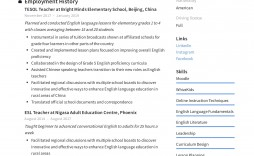 003 Astounding Resume Example For Teaching Picture  Sample Position In College Teacher School Principal India