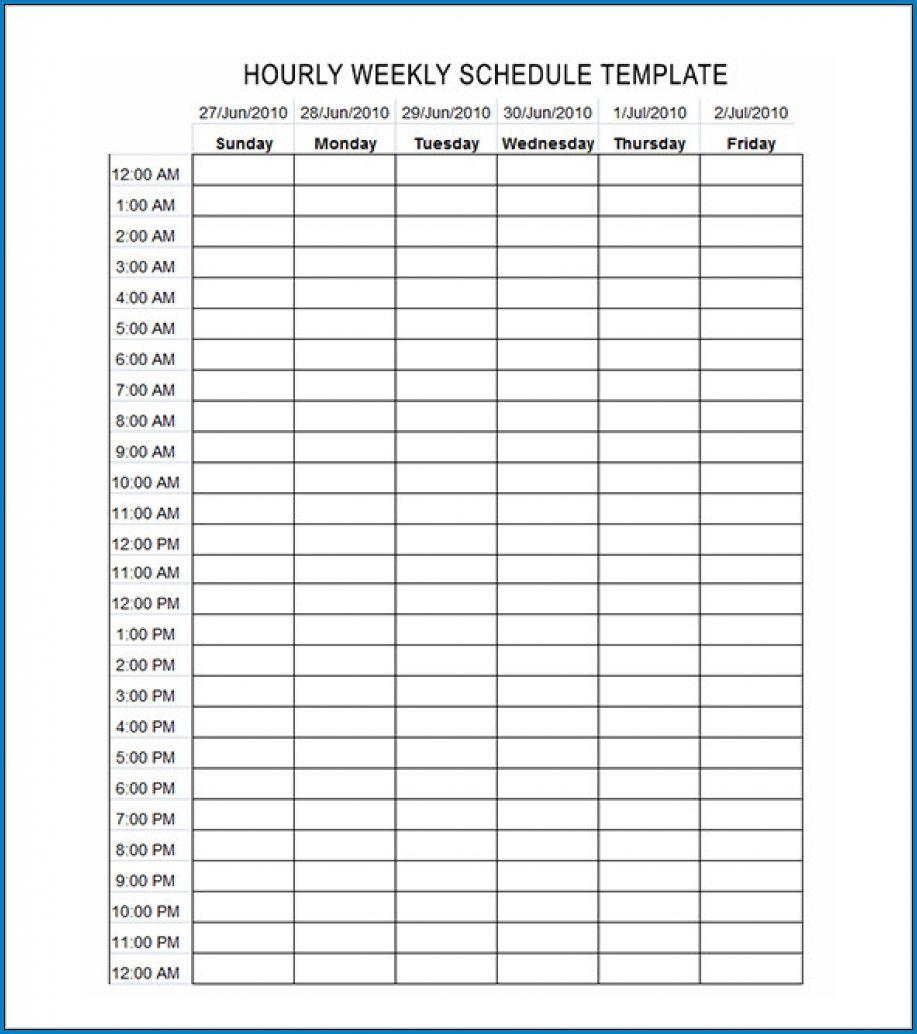 003 Astounding Weekly Hourly Schedule Template Idea  Free Calendar Word PdfFull