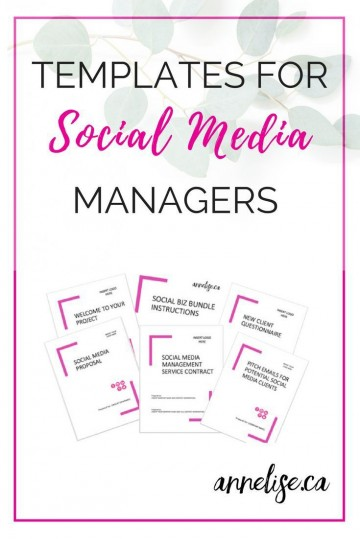003 Awesome Social Media Proposal Template High Resolution  Plan Sample Pdf 2018360