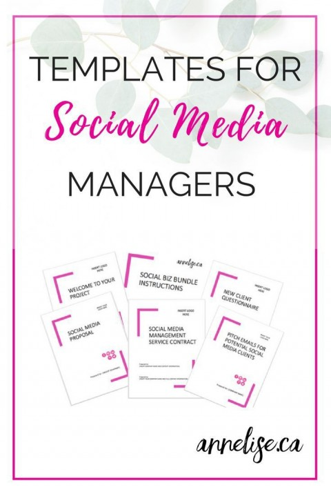 003 Awesome Social Media Proposal Template High Resolution  Plan Sample Pdf 2018480