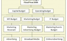 003 Breathtaking Line Item Budget Format Picture  Sample Template Spreadsheet