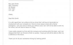 003 Breathtaking Sample Resignation Letter Template Email Highest Quality