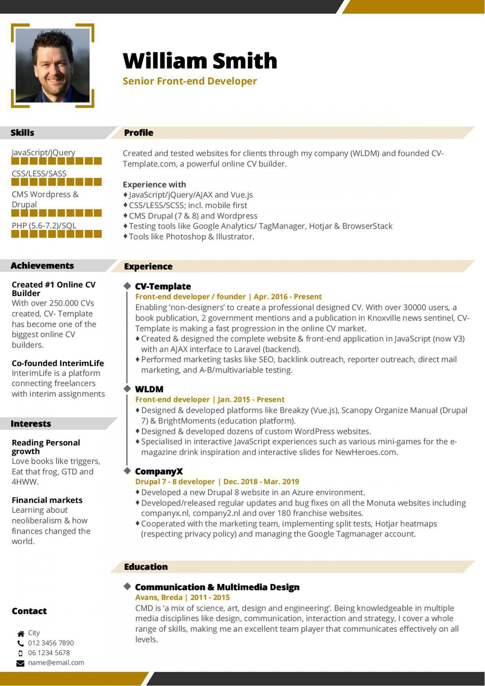 003 Dreaded Professional Cv Template Free Online High Definition  Resume1920
